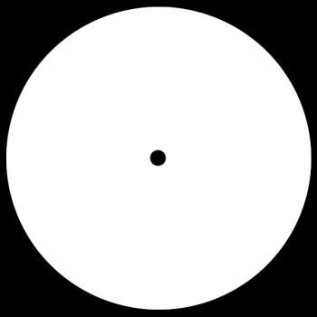 Blank Record Labels
